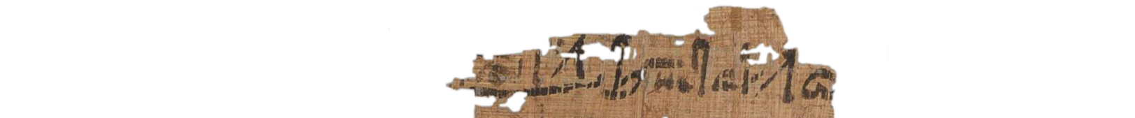 the Turin king list 3.1 (photo of the hieratic text)