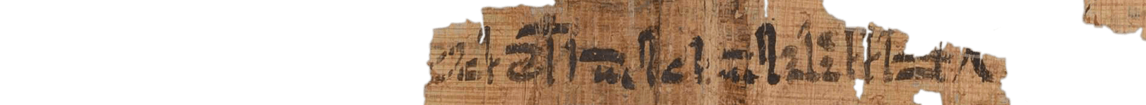 the Turin king list 3.4 (photo of the hieratic text)