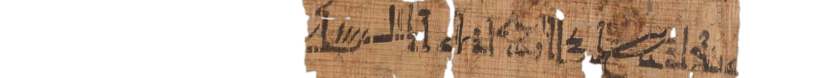 the Turin king list 3.8 (photo of the hieratic text)