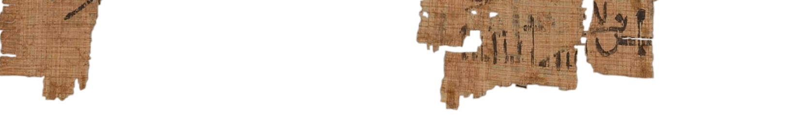 the Turin king list 3.25 (photo of the hieratic text)
