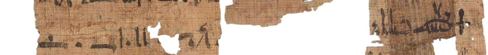 the Turin king list 4.3 (photo of the hieratic text)
