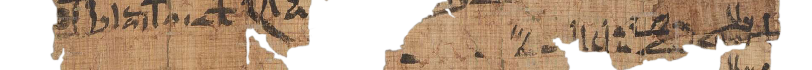 the Turin king list 4.6 (photo of the hieratic text)
