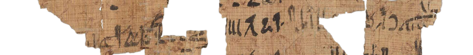 the Turin king list 4.8 (photo of the hieratic text)