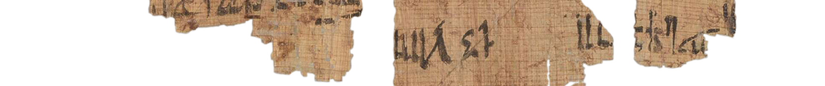 the Turin king list 4.9 (photo of the hieratic text)