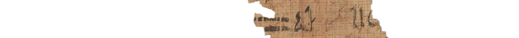 the Turin king list 4.11 (photo of the hieratic text)