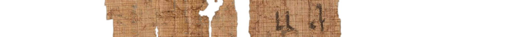 the Turin king list 4.16 (photo of the hieratic text)