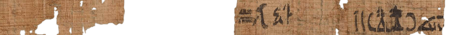 the Turin king list 4.24 (photo of the hieratic text)