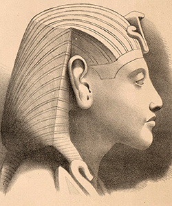 picture of Drawing of Amenhotep IV<br>from Denkmäler III 295